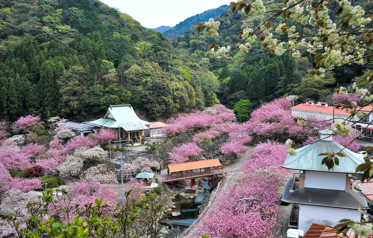 La ville de Oita au Japon